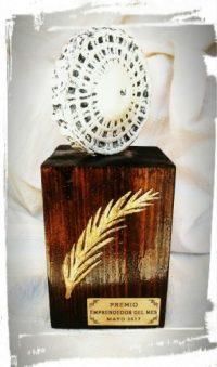 Punteras Footbrake: Premio Emprendedor, Mayo 2017.